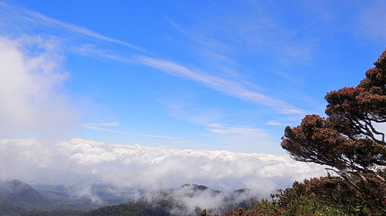 Mt. Dulang Dulang's Peak