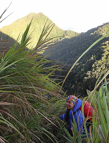 Mt. Dulang Dulang. D2K Traverse Bukidnon.