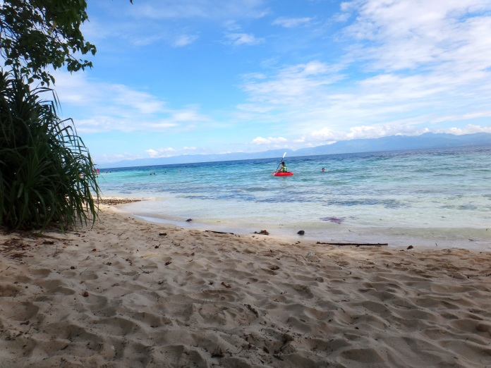 Basdaku, Moalboal. Cebu Beachineering