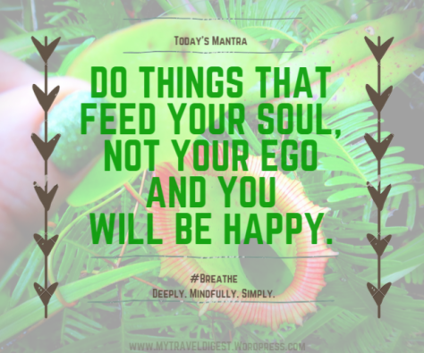 My Travel Digest Blog. Feed Your Soul. Do things that feed your soul and not your ego and you will be happy.