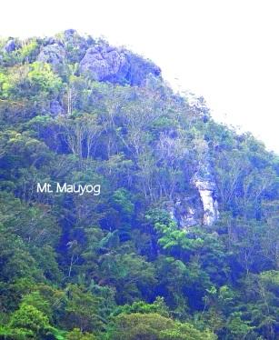 Mount Mauyog. Balamban, Cebu.